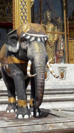 Buddha elephant WSN